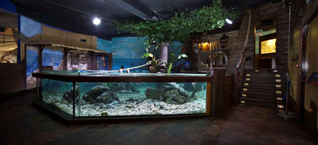 Sea Life Centre aktiviteter barn Costa del Sol
