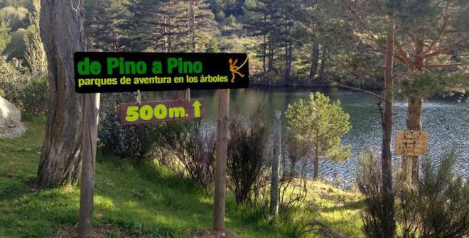De Pino a Pino Parque i Madrid