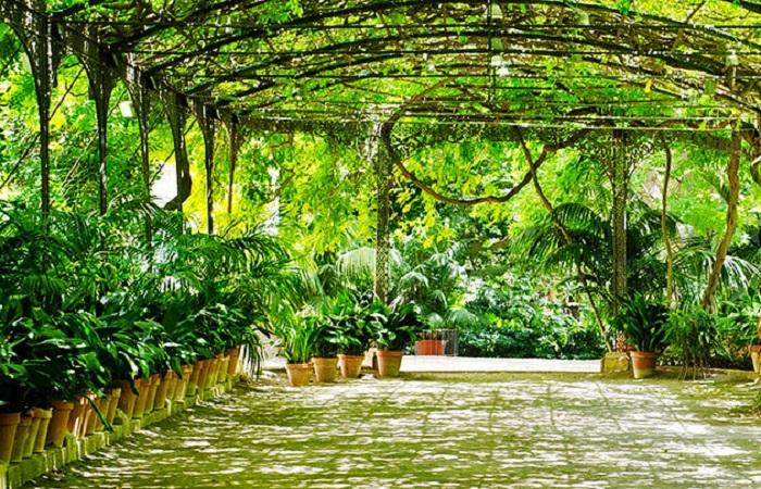 Conception Botanical Garden i Malaga