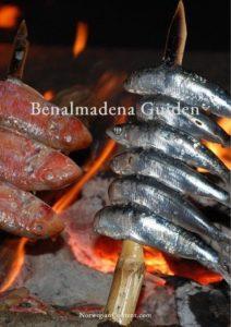 Benalmadena Guide Spania